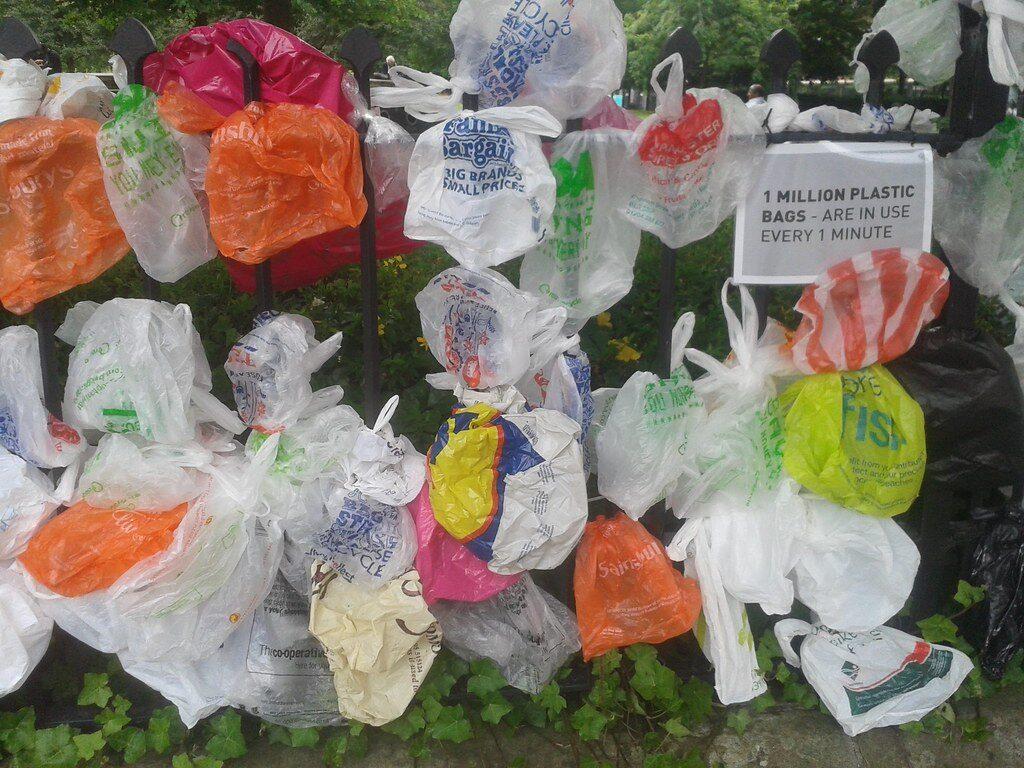 De Tassen Ban Haagse Markt Marktvisie Plastic In Doen ⋆ Wil EH9IYW2D